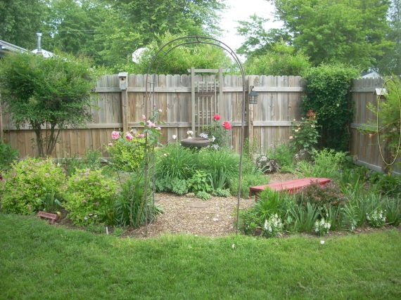 Arbor Garden - new home for Tree Peony?